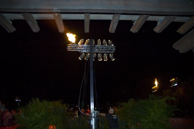 firefly on a lighting rig at a theme park